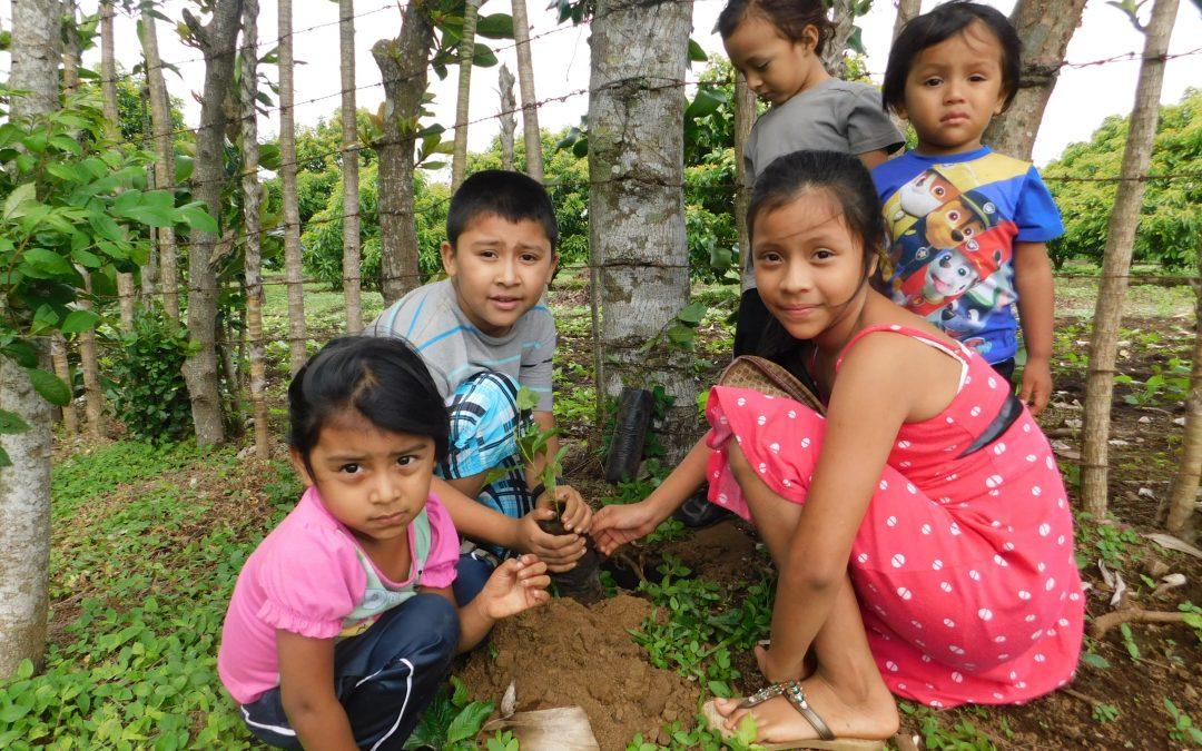 Unsere Weihnachtsspende 2020 geht nach Nicaragua